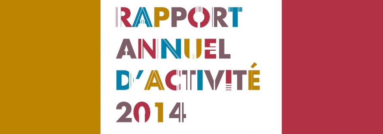 Rapport annuel d'activité 2014
