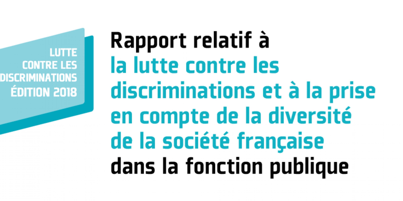 20190625_rapport_lutte_contre_discris_dgafp.png