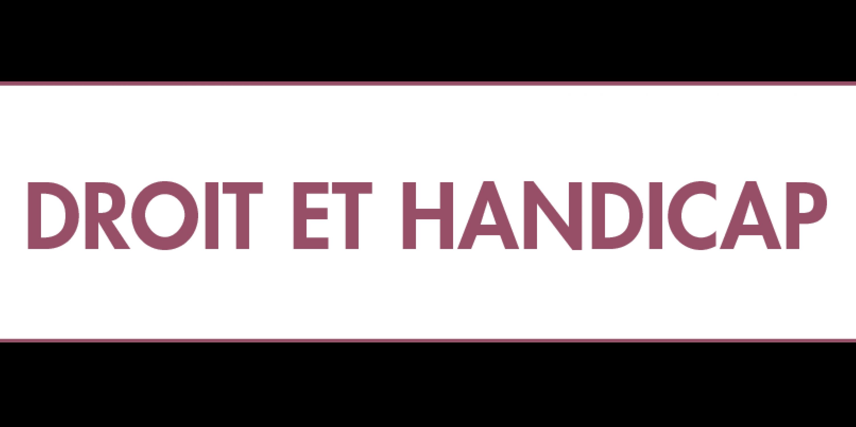 20190627_grenelle_droit_et_handicap.png